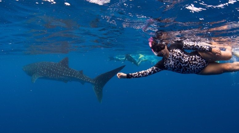 Ningaloo Reef, Western Australia. Photo credit: Aimee Jan, 3 Islands